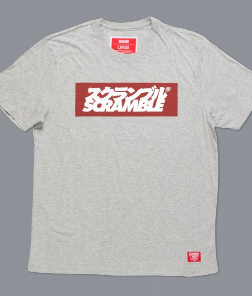 Box-Logo-Tee-Grey-2